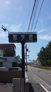 扇ヶ浜道路に面したロケーション。和歌山県田辺市にある散歩道(カフェ・喫茶)では爽やかな海の風を感じながらワンちゃんともカフェを楽しめます。また店内へはスロープを通って入れますのでご高齢の方や車椅子でも安心です。